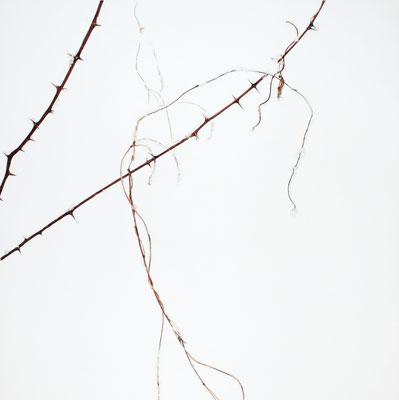 Bianco carta accordi - acquarello su carta - cm 105 x 105 - 2014