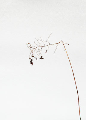 Quello che resta #3 - Acquarello su carta - cm 56 x 76 - 2013