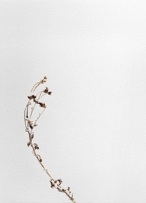 Bianco carta#10 - acquarello su carta - cm 56 x 76 - 2014