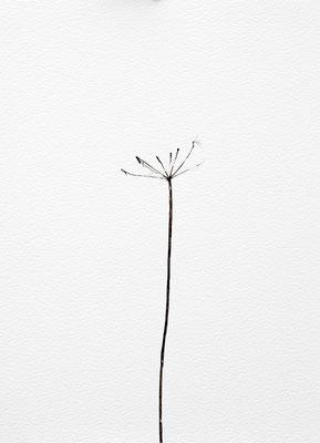 Bianco carta#16 - acquarello su carta - cm 56 x 76 - 2015