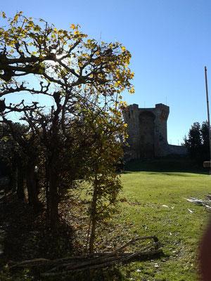 Torre dell'Onglavina, interno