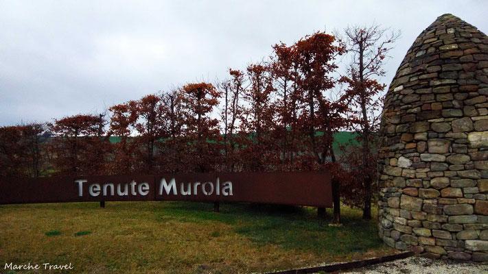 Tenute Murola, Urbisaglia. Ingresso alla cantina