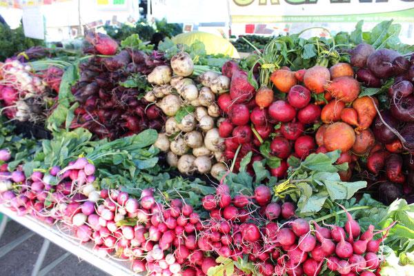 かぶ、にんじん、大根など、カラフルな根菜
