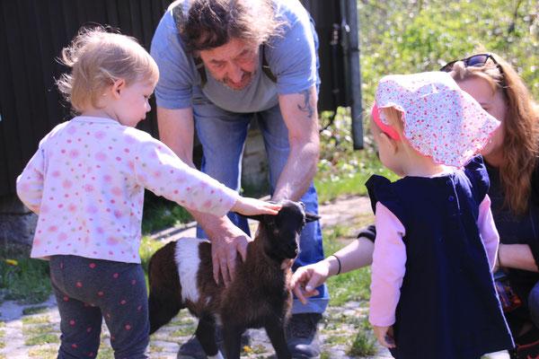 """Da fragt man sich was spannender war, die Suche nach den Ostereiern  oder die Streicheleinheiten für Schaf """"Hennes"""""""