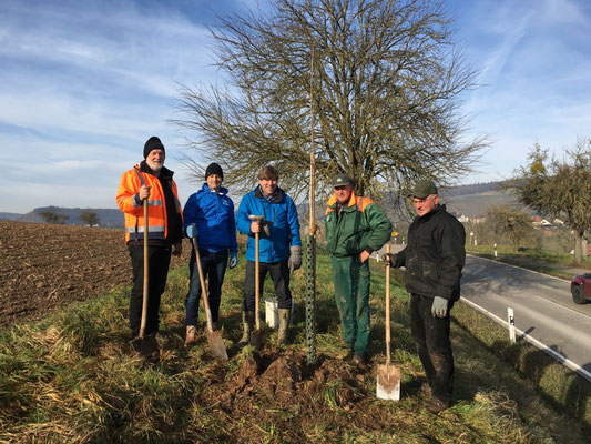 Alois Danner (Stadt Sachsenheim), Martin Buck, Markus Rösler und zwei Landwirte Andreas Bentz und Helmut Schelling bei der Pflanzung des 12. Baumes