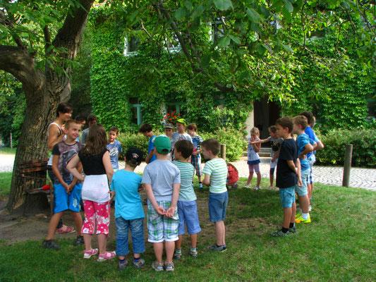 Frau Liebke lernt den Nussbaum und die Ameisen kennen