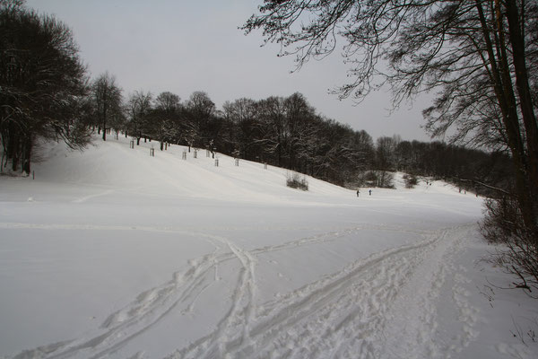 Der zweite Schneehusch