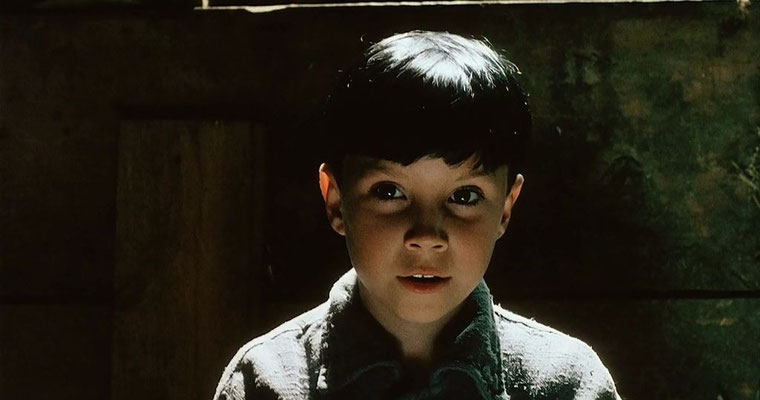 L'Enfant Miroir de Philip Ridley - 1990 / Horreur