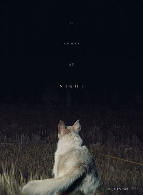 It Comes At Night (2017/de Trey Edward Shults)