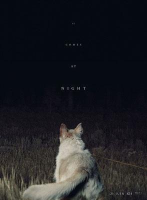 It Comes At Night (2017/de Trey Edward Shults)