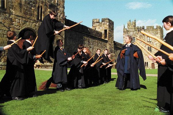 Harry Potter à l'école Des Sorciers de Chris Colombus - 2001 / Fantastique