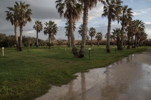Es hat über Nacht sehr geregnet