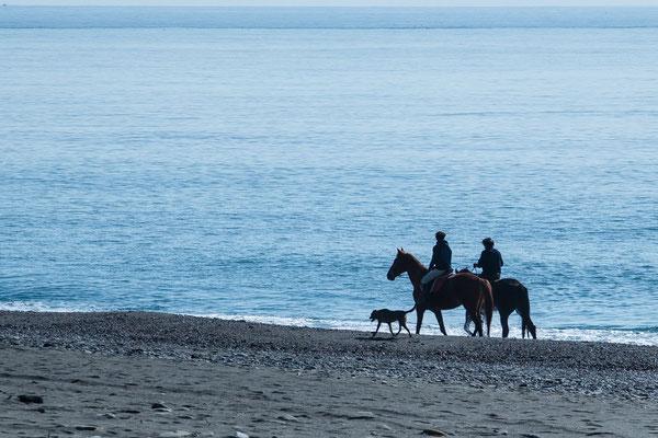 Ein Morgenritt am Meer