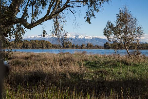 Lagune di Sabaudia bei Latina