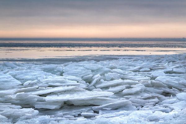 Shelf Ice, Hoorn