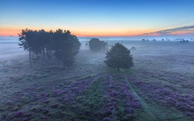 Drenthe sunrise