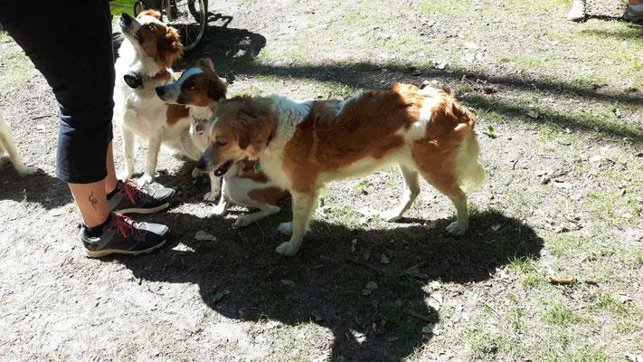 Esme, Anni & Bakira