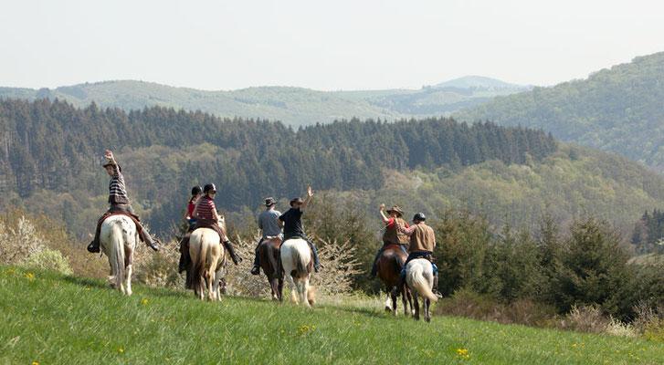 RossFoto Dana Krimmling Piets Adventure Trails Pferdefotografie Wanderreiten Freiberger Pferde