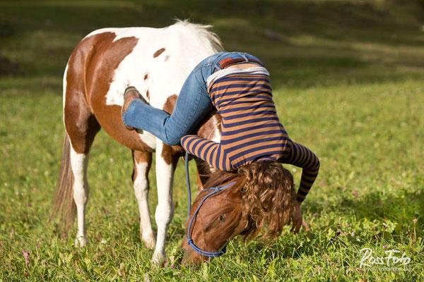 RossFoto Pferdefotografie Fotografien vom Wanderreiten Westernreiten Jagdreiten Kavallerie Freiberger Pferde Quarter Horses