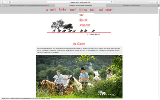 Webseite Fischerhof Wanderreiten, RossFoto Dana Krimmling