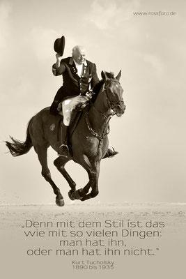 Jagdreitertage Norderney 2016; RossFoto Dana Krimmling; Pferdefotografie; Jagdreiten; Jagdpferd; Niedersachsenmeute; Schleppjagd; Reiten am Meer; Reiten im Wasser; Hundemeute; Jagdhunde; Reiten am Strand, Verdener Schleppjagdverein