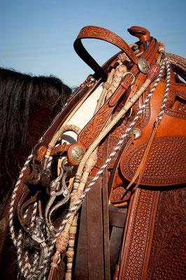 RossFoto Pferdefotografie Dana Krimmling Wanderreiten Westernreiten Freiberger Pferde Viehtrieb