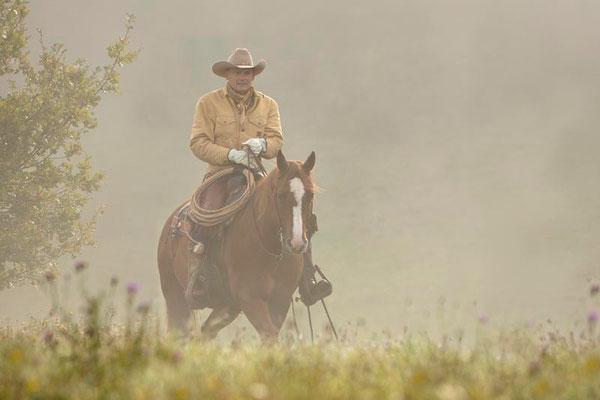 RossFoto Pferdefotografie Fotografien vom Wanderreiten Westernreiten Freiberger Pferde Quarter Horses