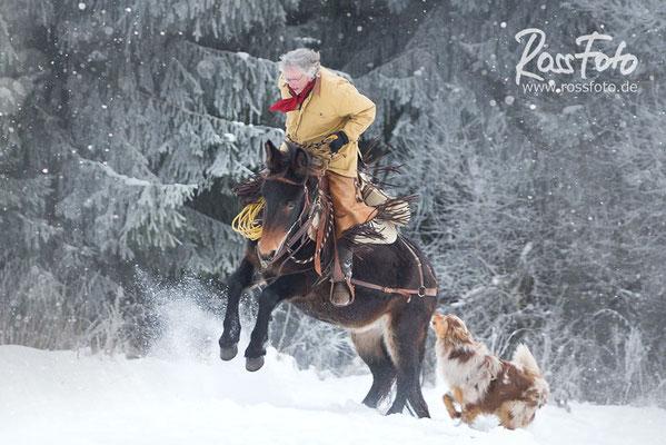 Reiter im Schnee; Reitergruppe im Schnee; Reiten im Winter; RossFoto Dana Krimling; Piets Adventure Trails
