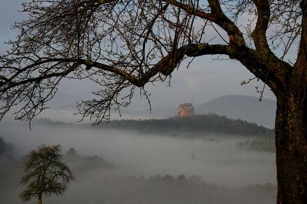 RossFoto Dana Krimmling Pferdefotografie Bilder vom Wanderreiten Chateau de Fleckenstein