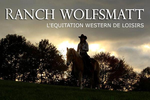 RossFoto Dana Krimmling, Pferdefotografie, Fotografie, kavalleriereiten, Deutscher Kavallerieverband, Kavalleriemeisterschaft