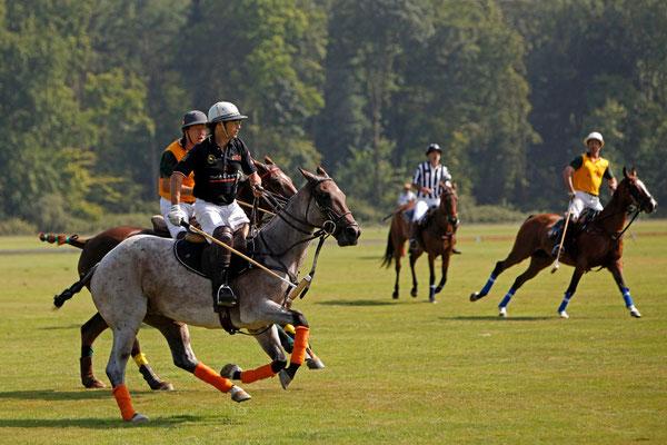RossFoto Dana Krimmling Pferdefotografie Fotos vom Wanderreiten Pferdeportraits Jagdreiten Polo
