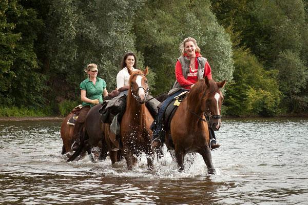 RossFoto Dana Krimmling Pferdefotografie Fotografien vom Wanderreiten Pferd in Wasser