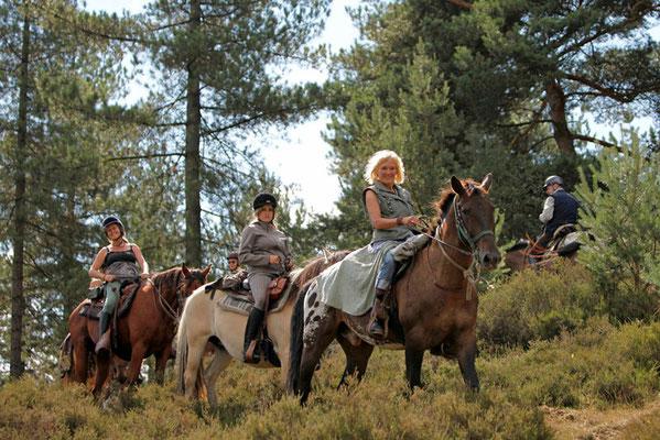 RossFoto Dana Krimmling Pferdefotografie Fotografie vom Wanderreiten Wanderritt Freiberger Pferde