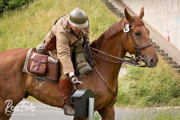 RossFoto Dana Krimmling Internationale Deutsche Kavalleriemeisterschaften 2015, Pferdefotografie, fotografie, wanderreiten, jagdreiten, Kavallerie, kavalleriereiten, pferde, kavalleriepferd, Gotha, boxberg, Ulanen, Kavallerieschwadron 1972, Nadasdy Husare