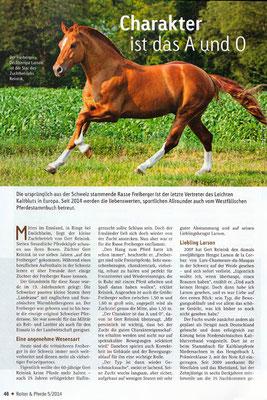 RossFoto Dana Krimmling, Reiter & Pferde Westfalen 2014