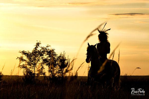 RossFoto Pferdefotografie Dana Krimmling Wanderreiten Westernreiten Freiberger Pferde Viehtrieb Ritterspiele Ritter Stunt Feuer show Stuntreiter Thoralf Scheffler