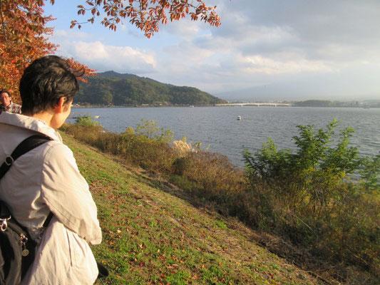 河口湖の紅葉はこれからですが、、、、。