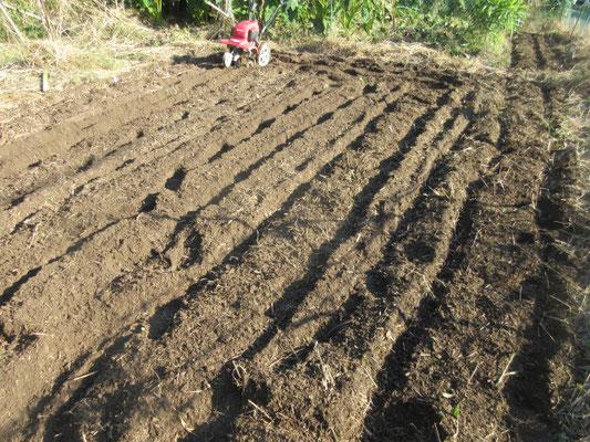 耕うん機が使えるのは一ヶ所だけです。