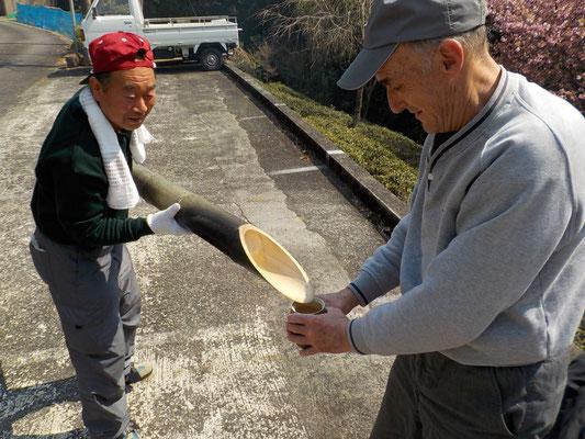 日本生まれじゃないけど、白菜作ってキムチも漬けます。