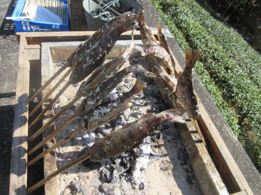 川魚を二時間かけてゆっくり焼いていただきます。