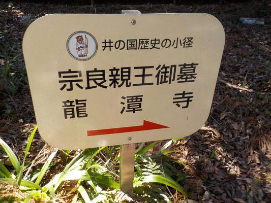 龍潭寺と井伊谷宮は地続きです。ある意味では井伊谷宮の方が由緒あり。