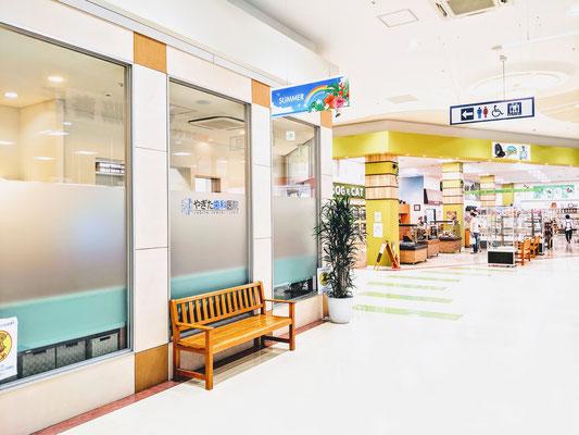 やぎた歯科医院_仙台市太白区の歯医者02
