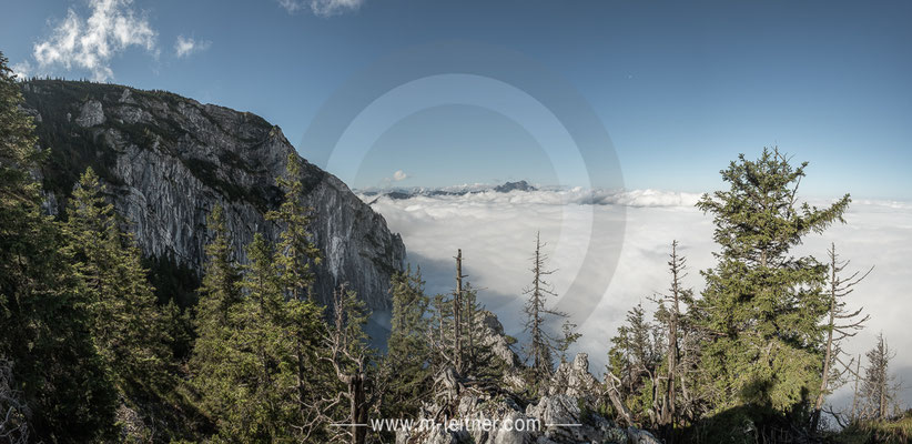 """""""brennerin"""" attersee salzkammergut - size XL - picture ID 228082"""