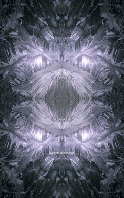 """eisblume"" - ART edition - size XL - picture ID K207567"