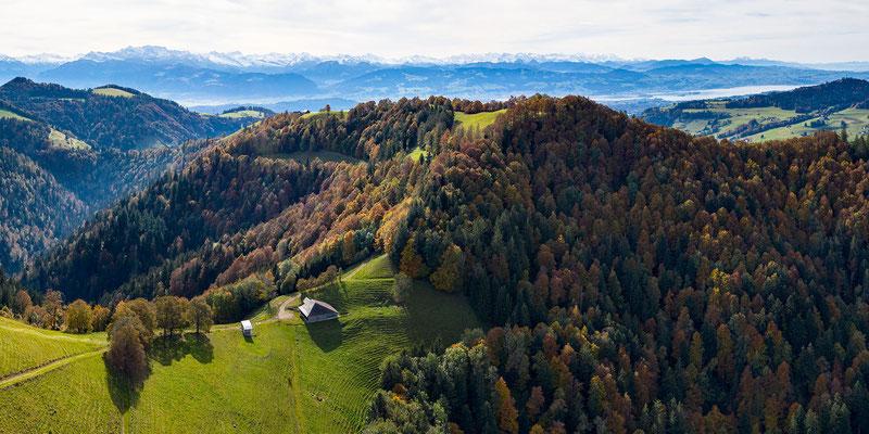 Blick gegen Süden (Brandegg, hinten Zürichsee)