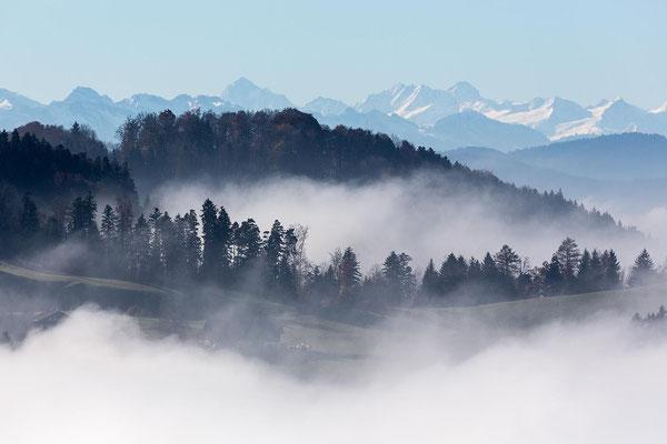 Höchste Gipfel: Finsteraarhorn, Lauter- & Schreckhorn.