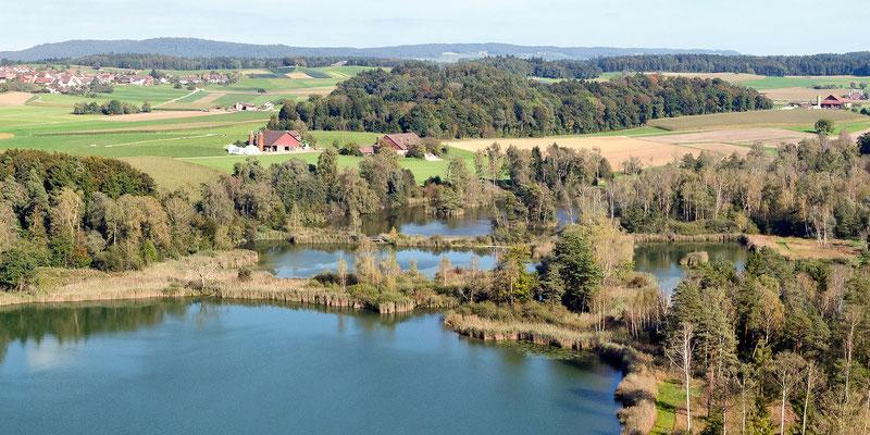 Ausschnitt aus dem vorangehenden Bild: Blick über den Ostteil gegen den Weiler Riethalde und Truttikon links hinten.