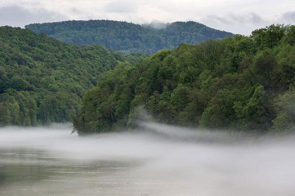 Nebelbänke über dem warmen Rheinwasser