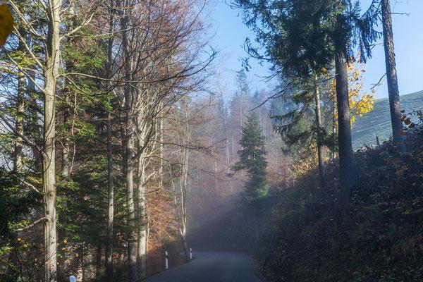 Kurs vor Sternenberg erreichen wir die Nebelobergrenze.