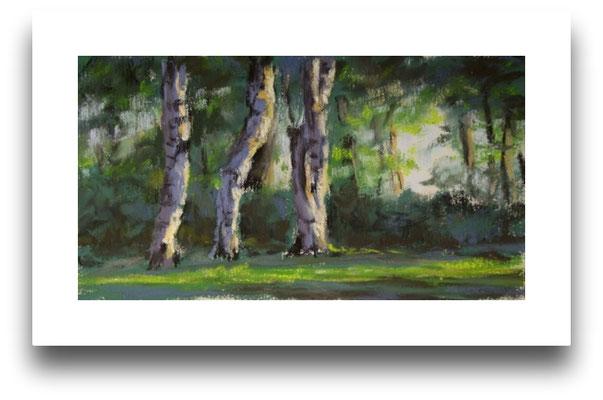 Drei Birken am Plöner See, Skizze